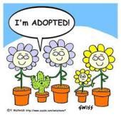 Yo no soy gente, soy adoptada